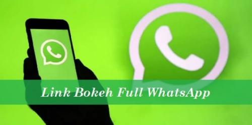 Link Bokeh Full Whatsapp (Gabung Grup WA Full Bokeh)